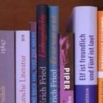Duitse boeken, Duitse schrijvers
